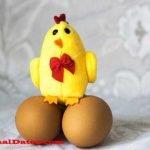 Que comen las gallinas ponedoras para dar huevos de alta calidad