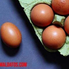Porque las gallinas ponen huevos blandos