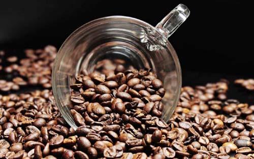 cafeina sistema nervioso