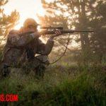 La caza deportiva de animales, ¿debería considerarse un deporte?
